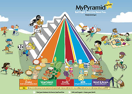 food chain pyramid worksheet. Food Chain Pyramid Worksheet.