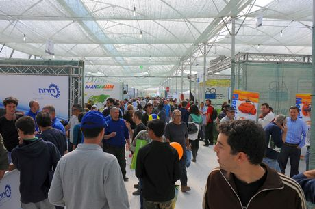 Arava open day agricultural exhibition