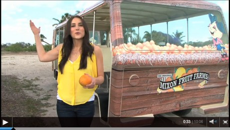 mixon fruit farms healthy exotic fruits
