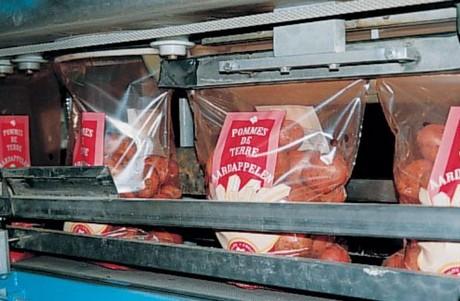- potatoes