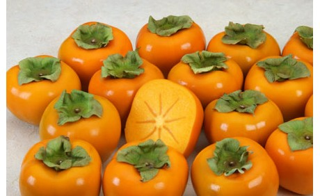 how to grow sharon fruit