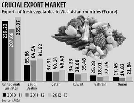 Saudi Arabia complains about pesticide residues on Indian vegetables