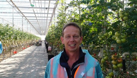 AU: Guyra Greenhouse vegetable grower wins top farmer honour