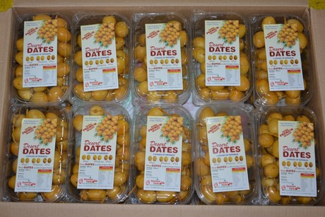 Indian Barhi Date Production Doubles