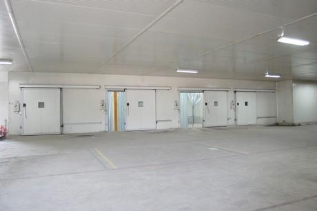 & New cold storage wholesale outlet opens in Jalandhar