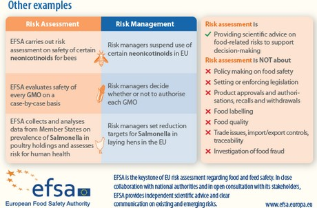 Freshplaza Risk Assessment Vs Risk Management Whats The