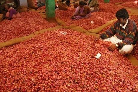India kharif crop brings down prices