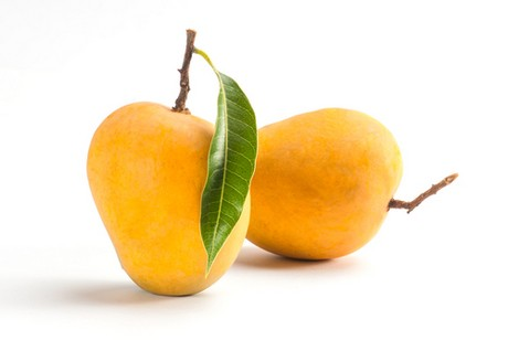 how to sustainably grow mangoes in ethiopia