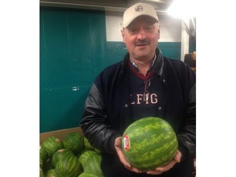 Canada: Medium size watermelons from Mexico