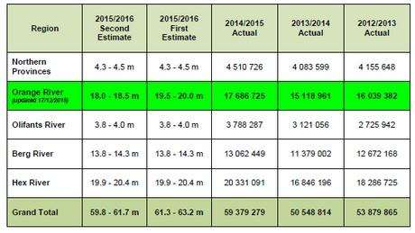 Sudafrica ulterioremente ridotte le stime per la produzione precoce di uva da tavola - Uva da tavola precoce ...