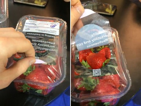 Strawberry packed by traysealer