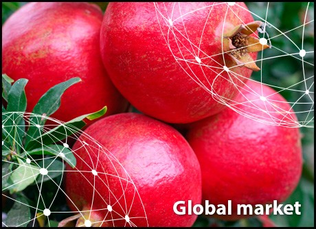 the increasing competition in the global 6 factors shaping the global economy in 2016 the pressure on existing firms to adapt to increased competition is likely to mean that prices and profit margins.