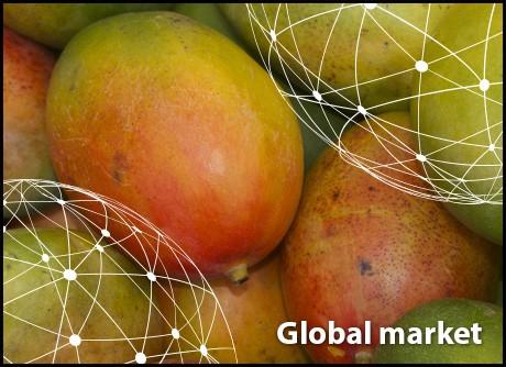 OVERVIEW GLOBAL MANGO MARKET