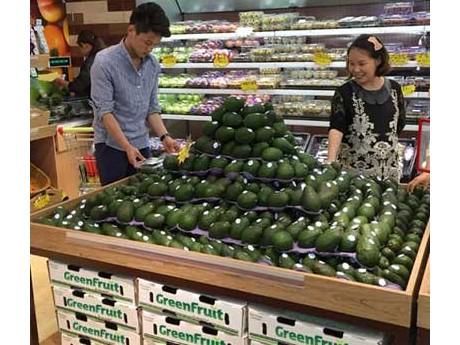 Avocado production in Mexico