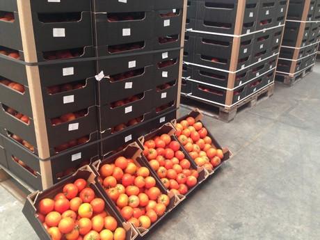 Regno unito piu 39 stabili i prezzi dei pomodori polacchi for Appoggiarsi all aggiunta al garage