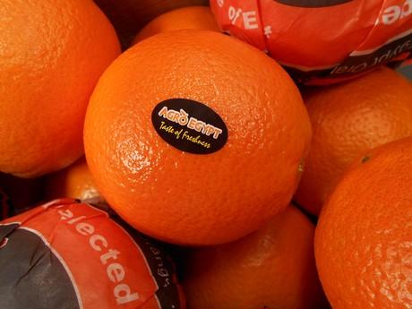 Resultado de imagen para egipto naranjas