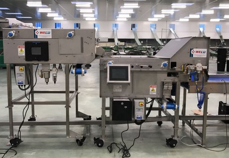 Sorting machines for blueberries - Impulse and Berrytek
