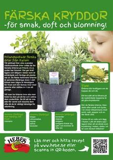 le erbe aromatiche sono sinonimo di primavera in svezia - Piccolo Giardino Sinonimo