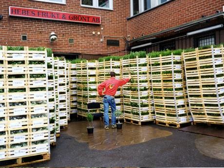 buyers logistics sweden