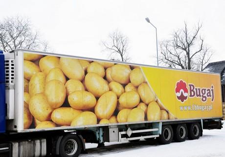 & Poland: Better cold storage has potato imports down
