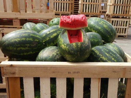 Watermelons competing with stonefruit & grapes in Germany