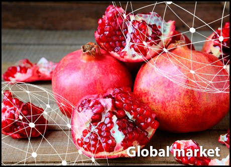 OVERVIEW GLOBAL POMEGRANATE MARKET