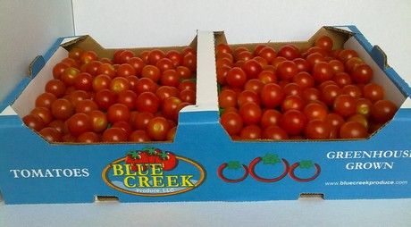 US: Logistics impacting pricing on tomatoes