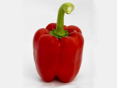 Syngenta and Kumato team up to offer new pepper varieties