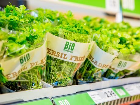 Auto Kühlschrank Lidl : Lidl niederlande expandiert clever und effizient sein produktsortiment