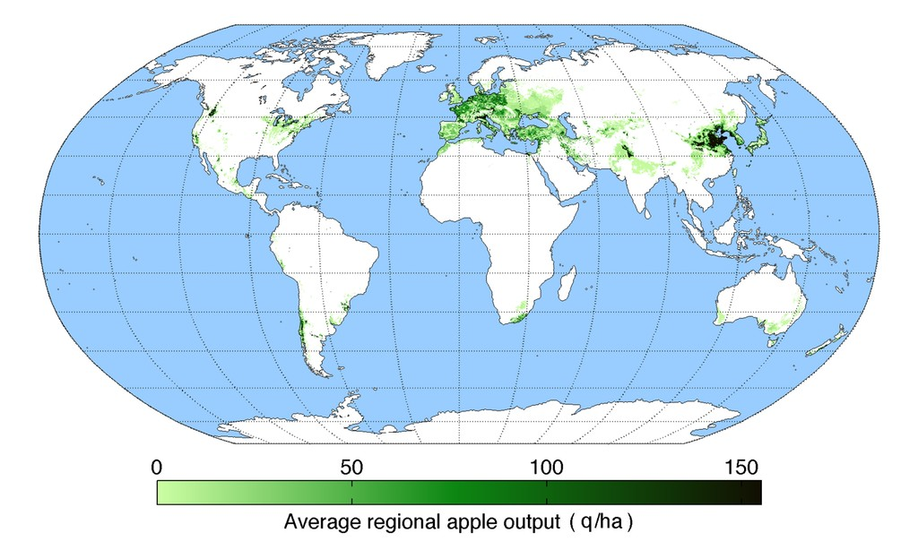 World apple production map world apple production map click here for a larger map gumiabroncs Choice Image