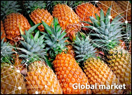OVERVIEW GLOBAL PINEAPPLE MARKET