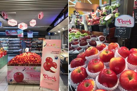 Fruit Op Kantoor : Pakketten fohw rob verschoor groenten fruit en meer