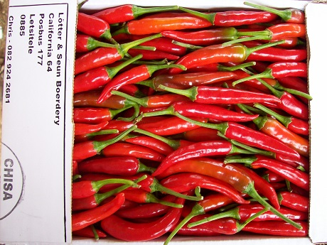 South Africa: chilli prices hit a seven year high